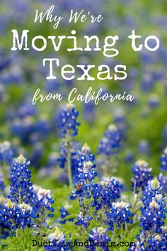 Texas family road trip with stops in Dallas, Waco, Austin and San Antonio. Trip includes attractions like The Alamo, the Riverwalk and Magnolia (Silos) Moving To Dallas, Moving To Texas, Moving To California, Texas Roadtrip, Texas Travel, Travel Usa, Travel Tips, Travel Guides, Travel Destinations