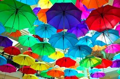 Les parapluies! :D