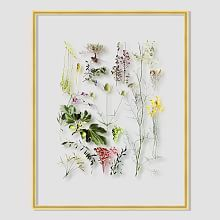 Still Acrylic Wall Art - Summer Botanicals