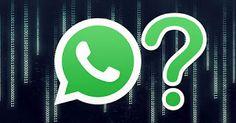 GrindWeb: 20 Cose che potete fare con WhatsApp e che forse n...