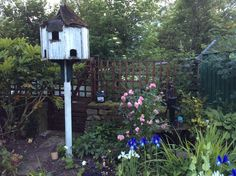 Cottage Garden in the heart of England.