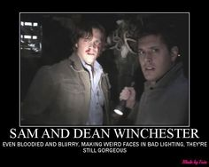 I just started watching Supernatural on netflix but I can feel an obsession in the works.