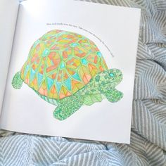 Slow And Steady Wins The Race Turtle Coloring