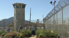 ABC prison gardens nt 131023 608 Prison Gardens Grow New Lives for Inmates Pelican Bay, Behind Bars, Criminology, Abc News, New Life, Prison, Tower, Around The Worlds, Yard