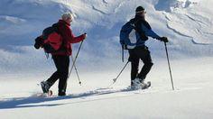 Beliebt bei den Gästen, das Schneeschuwandern im Winter
