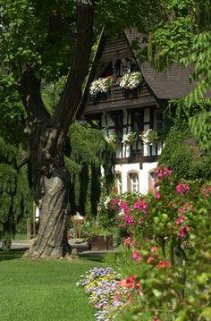 Parc Sainte-Marie, Nancy, France | Lorraine de Jardins ᘡղbᘠ