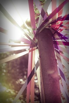 Maypole ribbons ~<>~