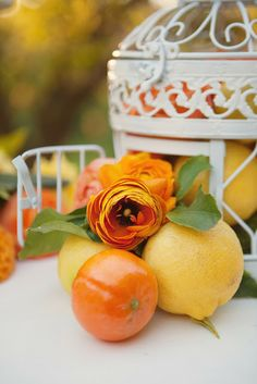 This shoot still makes my citrus orchard loving heart soar. My vision was a preppy, elegant wedding reception set in the middle of an ora. Wedding Themes, Wedding Colors, Wedding Ideas, Wedding Stuff, Wedding Inspiration, Summer Wedding, Wedding Reception, Raffle Baskets, Happy Flowers