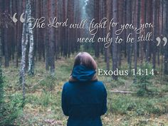 """The Lord will fight for you, you need only to be still"" - Exodus 14:14"