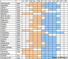 Les plantes aromatiques calendrier de semis plantation - Calendrier de plantation de legumes ...