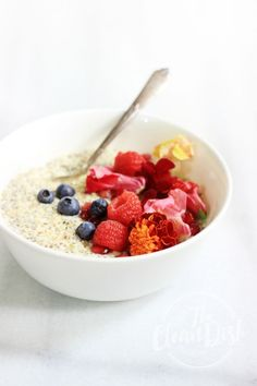 simple hemp seed porridge (V, GF,DF)  https://www.pinterest.com/pin/113012271883784851/