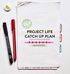 The Project Life Catch Up Plan free printable (in use by Olya)