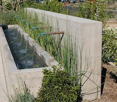 Contemporary water feature using simple lengths of copper piping to create the six spouts.
