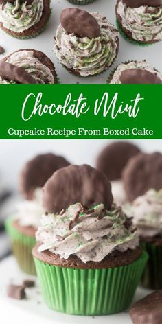 Chocolate mint cupcakes recipe is a tasty cupcake that should be made any time of year. Light chocolate cake topped with a homemade mint cookie frosting! #passion4savings #cupcakes #thinmint #grasshopper #mintcupcakes #boxcakemix #easy #mintfrosting