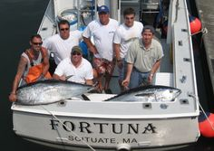 Bluefin Tuna fishing in Massachusetts with Mass Bay Guides. Massachusetts Bay is world famous for the abundance of Bluefin Tuna one of the fastest and strongest fish in the ocean. The boats from Mass Bay Guides are well respected in the area for their abi