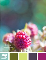 ColorFUL Palette Inspiration - Berry spectrum - #color #inspiration #colorpalette