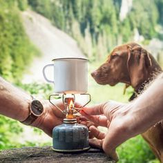 I'll take my coffee with a view please! #paulhewitt #getanchored @paul_hewitt #campingwithdogs