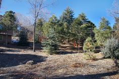 Would love a backyard this size! 4230 Brigadoon Ln, Colorado Springs, CO 80909 #coloradosprings #realestate