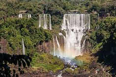 all waterfalls all over | ... do Iguaçu Falls / © Alexandre F de Fagundes | All Over The World