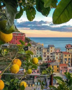 Cinque Terre, Vacation Trips, Dream Vacations, Travel Trip, Italy Vacation, Beautiful World, Beautiful Places, Places To Travel, Places To Go