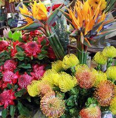 Les fleurs de Madère ! #Travel #Flower #Colors Funchal, Flower Arrangements, Flowers, Portugal, Travel Inspiration, Photo Galleries, Plants, Floral Arrangements, Royal Icing Flowers