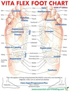 Did you know that you can stimulate greater healing to your body by applying essential oils to the Vita Flex points of your feet? And even more so if you use the Pad-Tip-Nail technique (this helps to fire voltages along the nerve pathway).  If you like acupuncture, try adding in some YL Essential Oils next time to improve the outcome.