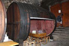 Une dégustation de vins aux Gondettes et la découverte du Vallon de l'Allondon - SWISS WINE DIRECTORY Wine Tasting Party, Lake Geneva