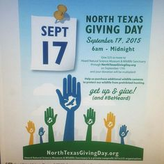 On #northtexasgivingday September 17 give $25 or more to Heard Natural Science Museum & Wildlife Sanctuary through http://ift.tt/1qri18j and your donation will be multiplied #texaswildlife #mckinneytexas #mckinneytx #mckinney #heardwildlifesanctuary #heardmuseum_mckinney #texas #texasphotos #heardmuseummckinney #heardmuseum #nature #science #wildlife #outdoors