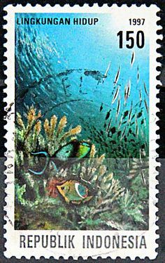 Animal Kingdom Dolphins Marine Fauna Togo Mnh Stamps Set Durable In Use