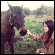 My little horse