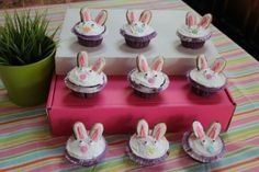 Bunny Birthday Party cupcakes for C