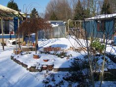 Februari 2012: Sneeuw-3