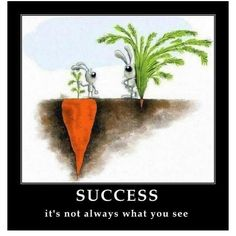 Success is not always about what you see.