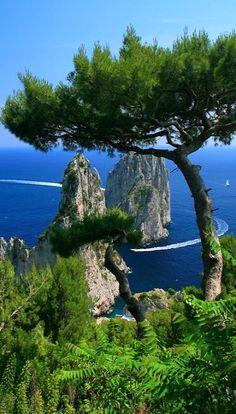 The three faraglioni (stacks) near Marina Piccola on the isle of Capri, south Bay of Naples, Italy • photo: Brian W. Skyum on Skyum World Travel Images