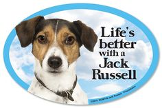 Jack Russell Oval Dog Magnet for Cars >>> Insider's special review you can't miss. Read more  : Dog Memorials