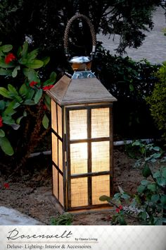 beautiful Lantern Mystery