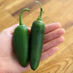 How to Freeze Jalapeno Peppers From the Garden