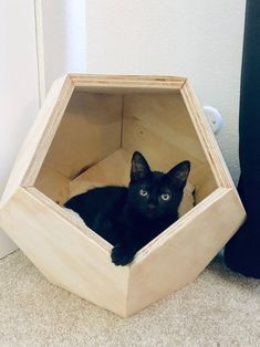 Animal Projects, Wood Projects, Cat House Diy, Kitty House, Geometric Cat, Wood Stain Colors, Pet Furniture, House Furniture, Furniture Ideas