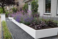 "Vorgarten ""anders als sonst"": von Mocking Hoveniers . Beach Gardens, Outdoor Gardens, Lawn And Garden, Home And Garden, Garden Design, Landscape Design, Outside Living, Colorful Garden, Front Yard Landscaping"