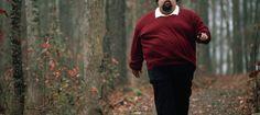 Cinco causas que explican la obesidad (y la comida basura no es una de ellas) - Noticias de Alma, Corazón, Vida