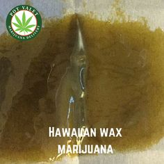 Enjoy the numerous health benefits that come along with Great Hawaiian Wax Marijuana. It is fruity flavored, 100% organic Co2 based wax. In its concentrated form it is highly reliable and high in quality.  What are you waiting for? Make a call at 1800-357-1314 for Hawaiian wax marijuana delivery today. #HawaiianWaxMarijuana #Wax #SantaBarbara #MedicalMarijuana #legalizemedicalmarijuana #cannabis #marijuana #marijuanadelivery
