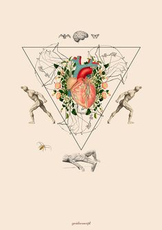 Antropoamorfico Yes I do concept Heart Collage, Heart Art, Collage Art, Collages, Brain Art, Magazine Collage, Anatomy Art, Digital Collage, Art Drawings