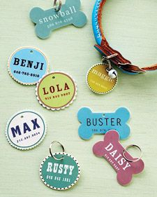 With our downloadable templates and easy-to-find materials you can create a customized ID tag for your pet.