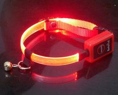 cat collar with led light Led Dog Collar, Cat Collars, Bangles, Bracelets, Gifts, Jewelry, Presents, Jewlery, Jewerly