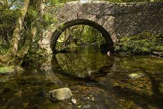 Love bridges that look like this