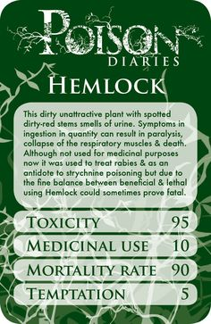Baneful Herbs P18 Hemlock(Conium maculatum) Hemlock is definitely another famous Witch's herb. It is also known as Warlock's Weed, Poison Hemlock and Winter Fern. Hemlock was once the go to plant for death by poisoning in Ancient Greece and famously it is the classical philosopher Socrates who was poisoned by this plant.