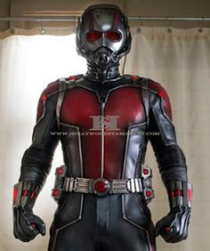 http://hollywoodstarjacket.com/product/ant-man-paul-rudd-real-leather-jacket-costume/