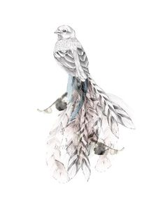 omg!   go to beth emilys site- amazing!   Bird of Paradise I - Open Edition Fine Art Print. $30.00, via Etsy.