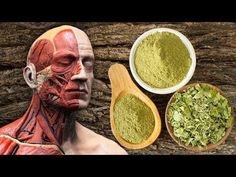 Moringa: 10 Reasons Why You Need This Superfood Miracle Tree, Prevent Diabetes, Lower Blood Sugar, Medical Problems, Eating Raw, How To Get Rich, Natural Cures, Superfood, Moringa Oleifera