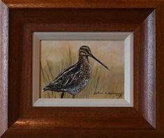 Original British Bird Paintings For Sale Photorealism, Wildlife Art, Bird Prints, Bird Art, Paintings For Sale, Natural World, Cool Pictures, Birds, The Originals